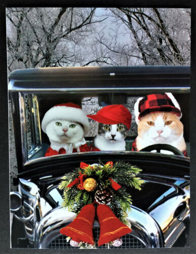 Cats Driving Car Christmas Postcards SET 4 Gray Orange Tabby White Cards Funny