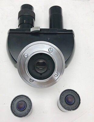 Ernst Leitz Wetzlar Binocular Microscope Head D Wpair Periplan 10x O Eyepieces