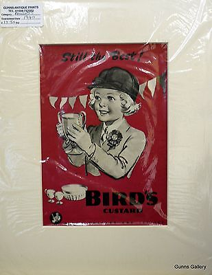 Original Vintage Advertisement mounted ready to frame Birds Custard 1940