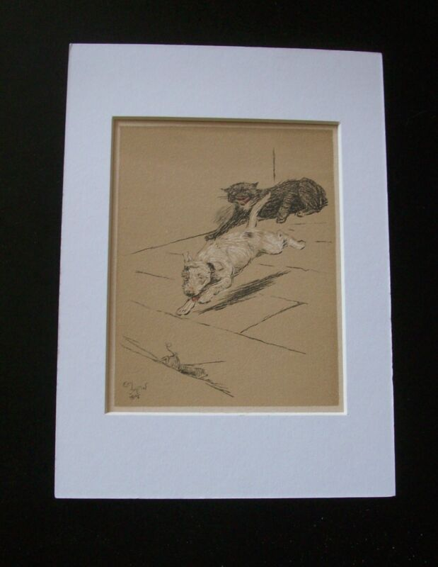 Dog Cecil Aldin Bookplate Print 1902 Help Mouse Escape Cat Matted Terrier? Mutt
