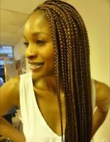 Ani African braids/sew in/cornrows/crochet
