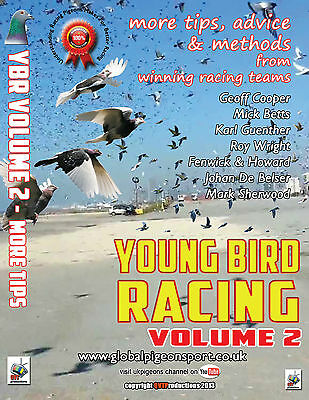 YOUNG BIRD RACING volume 2 - DVD - UK racing pigeons