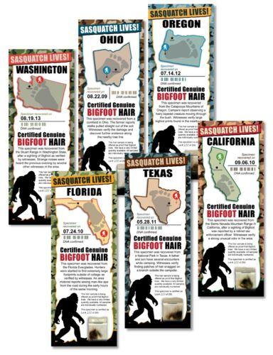 6pk - BIGFOOT SASQUATCH HAIR SAMPLE - Tracking Hunter Hunting - LIMITED EDITION