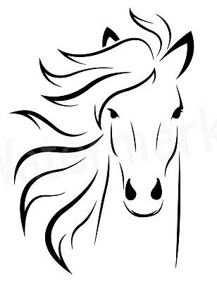 Custom Vinyl Car Decal Sticker Horse Stallion Equestrian Mane