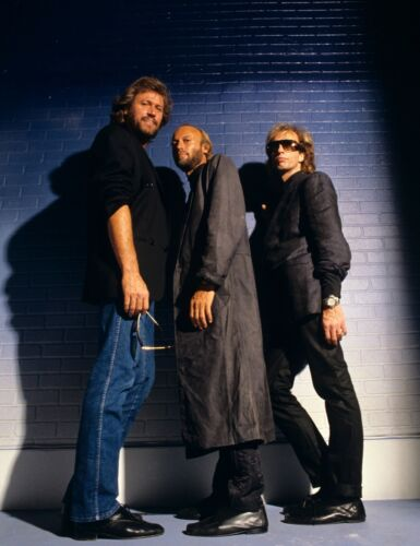 THE BEE GEES - MUSIC PHOTO #E-5