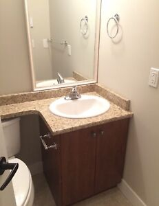 Two bedroom walkout basement suite for rent