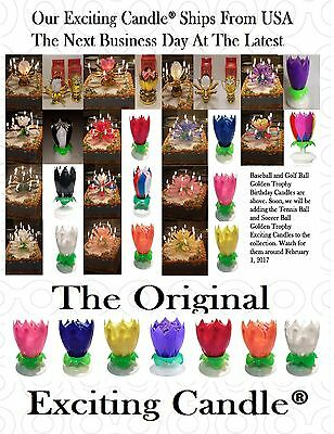 Amazing Musical Lotus Flower Exciting Happy Birthday Candle - You Choose 2
