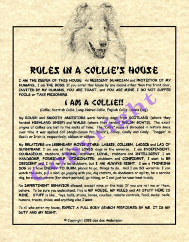 Rules In A Collie