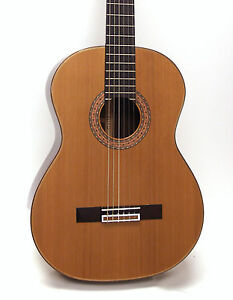 Guild-GAD-C2-GAD-Series-Nylon-Classical-Acoustic-Guitar-w-Case