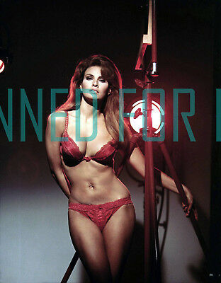 BEDAZZLED RAQUEL WELCH ULTRA SEXY PHOTO