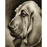 BLOODHOUND Watercolor ART Print Signed by Artist DJR