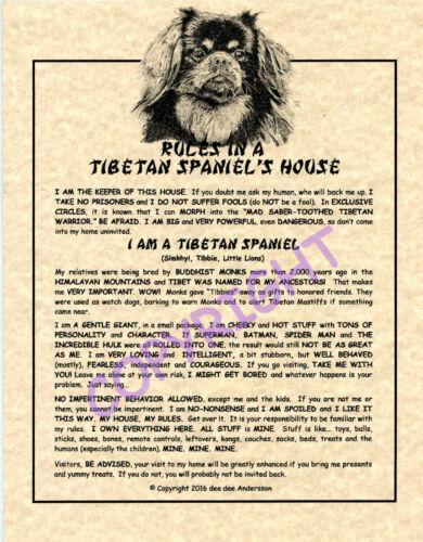 Rules In A Tibetan Spaniel