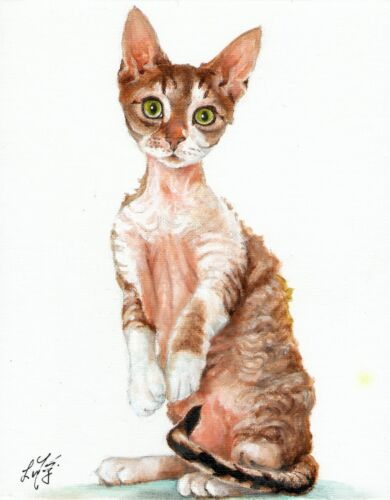 Original Oil Cat Portrait Painting DEVON REX BROWN TABBY Artist Signed Artwork
