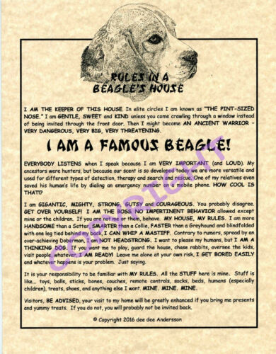 Rules In A Beagle