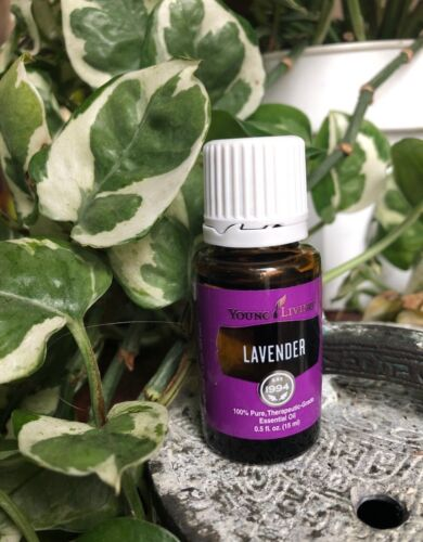 Young Living Lavender 15ml Essential Oils New Sealed And Original Item 3575 - $33.95
