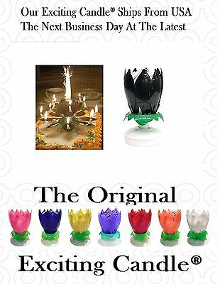 Black / Over The Hill Amazing Musical Lotus Flower Birthday EXCITING CANDLE