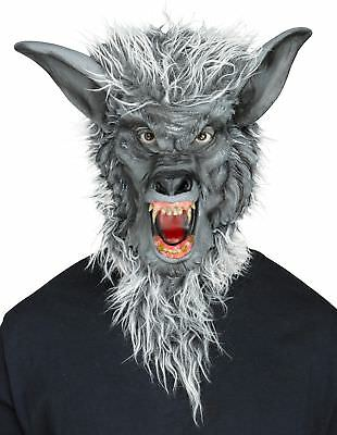 Grey Werewolf Latex Mask Evil Fangs Halloween Costume Accessory Wolf Man Beast - Wolf Fangs Halloween
