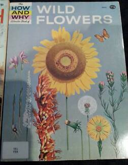 The How and Why Wonderbook of Wild Flowers Glenorchy Glenorchy Area Preview