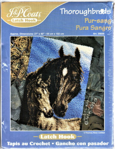 Thoroughbreds Latch Hook 27x40inch Rug Kit 25035 Horse and Colt NEW Thomas Ross
