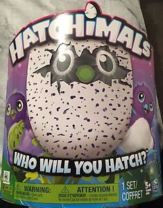 Hatchimals brand new x 3 available Lyons Woden Valley Preview
