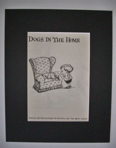 Dog Cartoon Print Norman Thelwell Favorite Chair Bookplate 1964 8x10 Matted Cute
