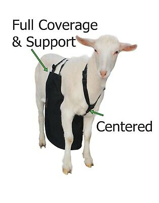 Anti Mating Anti Breeding Olor Buck Apron With Harness For Goatssheep Small
