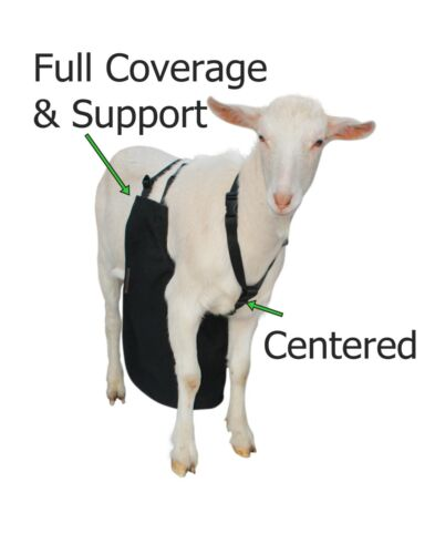 Anti Mating Anti Breeding OLOR™ Buck Apron with Harness for Goats/Sheep SMALL