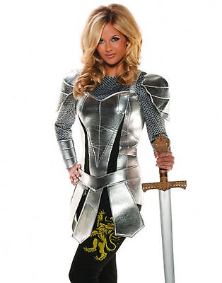 A Knight To Remember Medieval Silver Adult Womens Halloween Costume 1