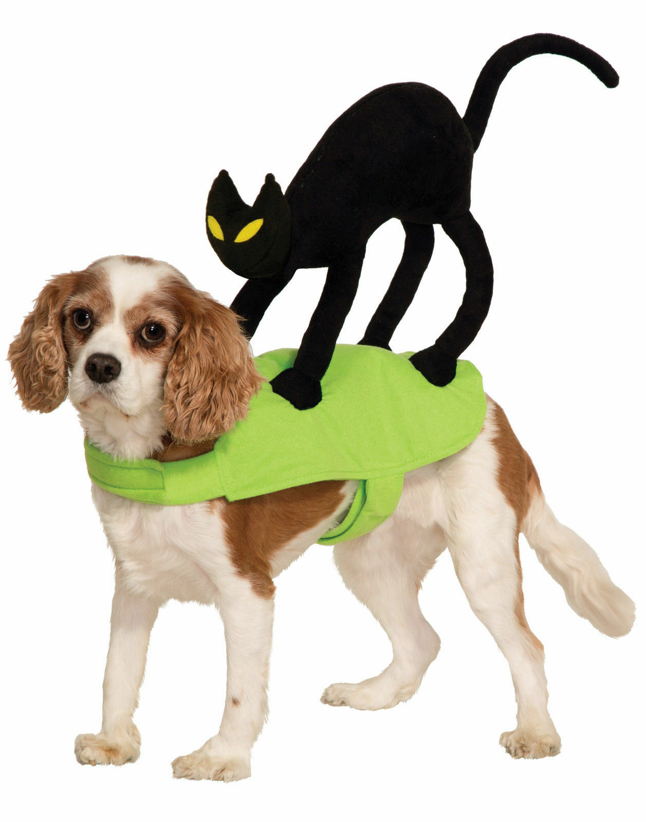 The Cutest Cat And Dog Halloween Costumes | eBay