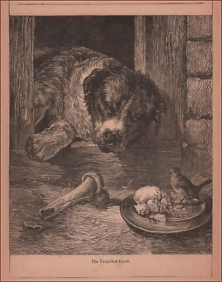 DOG in Dog House Watching Bird Eat from His BOWL, antique engraving 1883