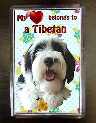 Tibetan Terrier Gift Dog Fridge Magnet 77x51m Birthday Gift Xmas Stocking Filler