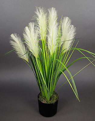 Palmengrasbusch 75cm im Topf DP Kunstpflanzen künstlicher Grasbusch Palmengras