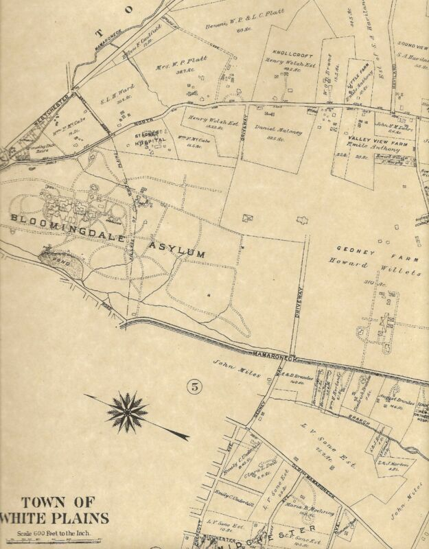 White Plains NY 1910 Detailed Street  Maps with Landowners Names Shown