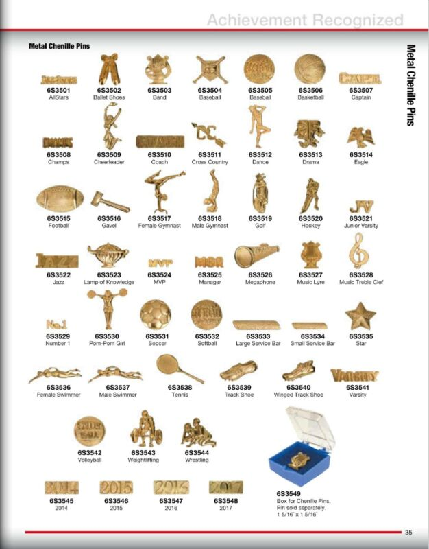 SPORTS AWARD VARSITY JACKET CHENILLE PINS-LAPEL PINS-49 STYLES-ACADEMIC-FLAG PIN