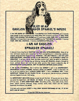 Rules In An English Springer Spaniel's House