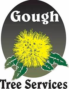 GOUGH TREE SERVICES - Experienced Diploma Qualified Arborist Bowen Whitsundays Area Preview