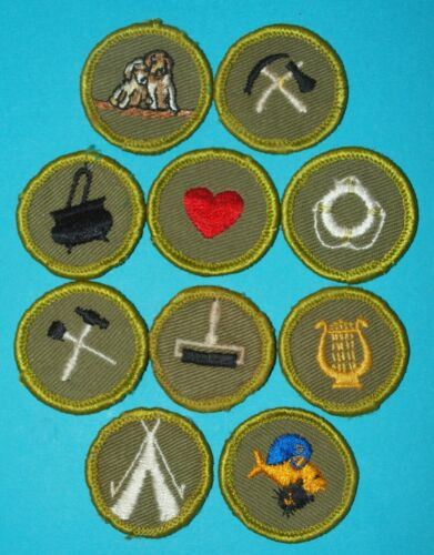 TYPE F MERIT BADGE LOT OF 10 - MUSIC  PETS  PRINTING +  -  BOY SCOUTS   -  Y264