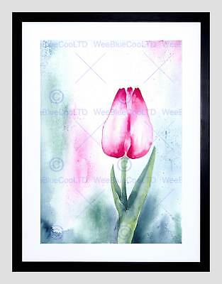TULIP FLOWER PINK WATERCOLOUR BLACK FRAME FRAMED ART PRINT PICTURE (Pink Tulip Pictures)