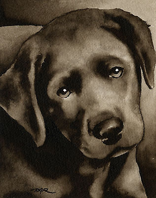 BLACK LAB PUPPY Watercolor ART Print Signed by Artist DJR