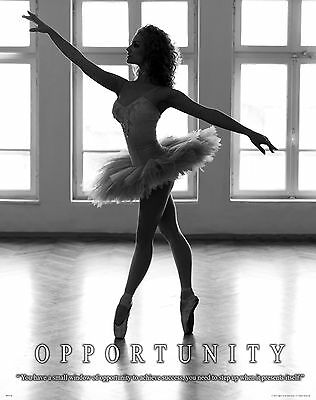 Ballet Dance Motivational Poster Art Print Shoes Flats Tutu Leotard Skirt Mvp309