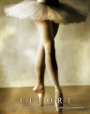 Ballet Dance Motivational Poster Art Print Shoes Flats Tutu Leotard Skirt Mvp248
