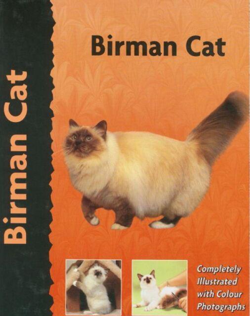 Birman Cat by Dennis Kelsey-Wood