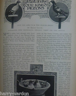 Racing Homing Pigeon Flying Club Kings Royal Old Edwardian Antique Article 1901