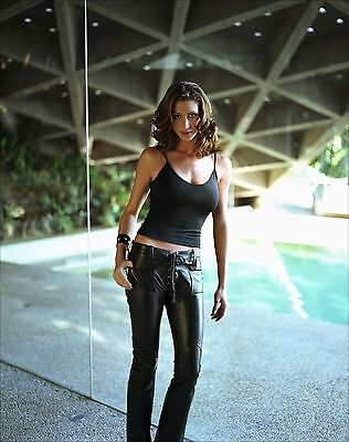 Shannon Elizabeth Unsigned 8X10 Photo  44