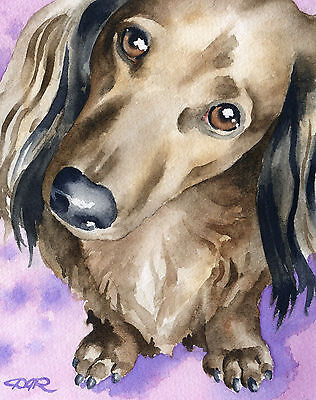LONG HAIRED DACHSHUND Watercolor 8 x 10 Dog ART Print Signed by Artist DJR
