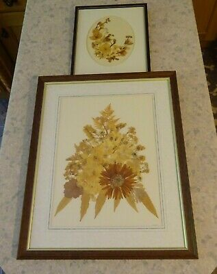 2 Antique Dried Flower Framed Pictures. 1 Large 1 Medium Size COLLECTION ONLY
