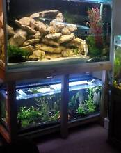 large two tier setup, plus 2 smaller tanks Point Cook Wyndham Area Preview