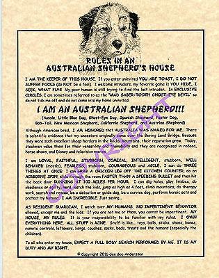 Rules In An Australian Shepherds House