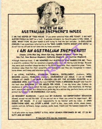 Rules In An Australian Shepherd