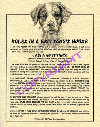 Rules In A Brittany